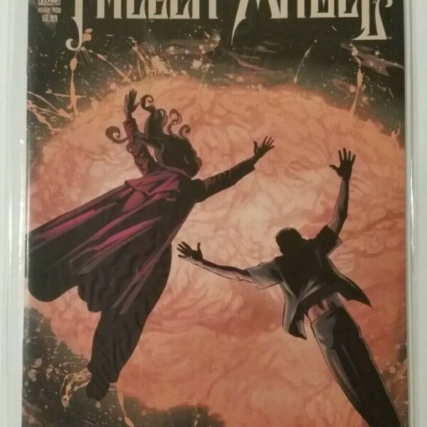 Fallen Angel 30, IDW comics, last issue available!